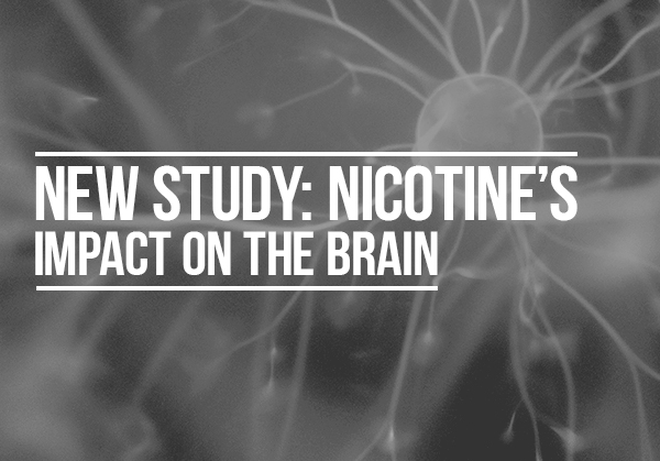 Nicotines-Impact-on-the-Brain